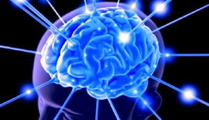 cerebroenforma